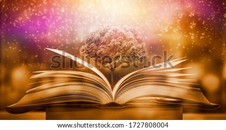 The magic of knowledge, the opening of the old big book in the library, with the magical light shining from above, is a great power of knowledge. Foto stock ©