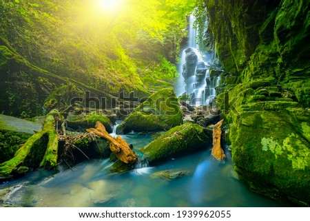 The magnificent waterfall view hidden in the deep forest. spectacular waterfall view and cool waters flowing over mossy stones in the wonderful natural scenery. Dagpinar blue waterfalls, Bursa, Turkey Сток-фото ©