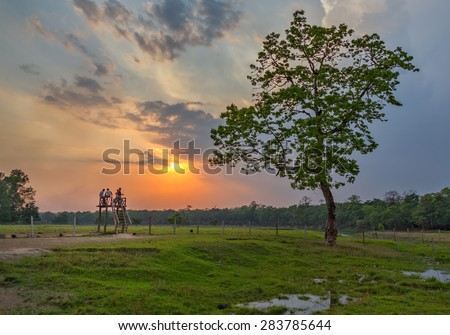 The mahout awaiting the return of tourists from the tour at sunset in the Royal Chitwan National Park - Terai, Nepal