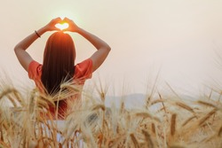The maiden hand made a heart-shaped symbol over the golden barley fields in the morning to symbolize friendship, love, and compassion. Showing Love and Friendship over the Golden Barley Fields