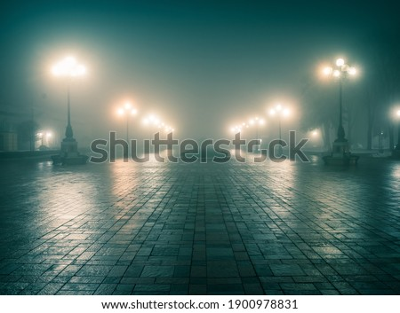The main alley of a night winter park in a fog. Footpath in a fabulous winter city park at night in fog with benches and latterns. Beautiful foggy evening in the Mariinsky Park. Kyiv, Ukraine.
