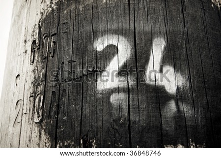 the main number is twenty four painted on wood