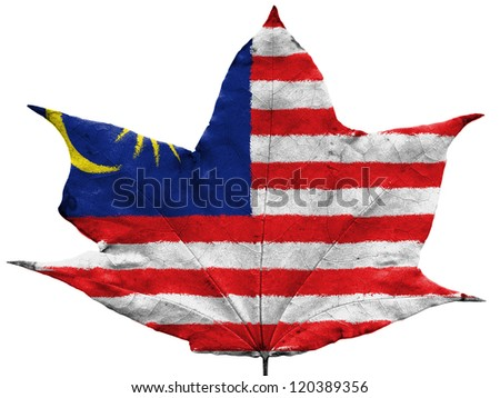 The Malaysia flag painted on  dried autumn leaf
