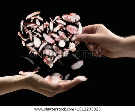 The male hand gives the woman the heart be made of bird feathers on black isolated background. Concept of gifts giving.
