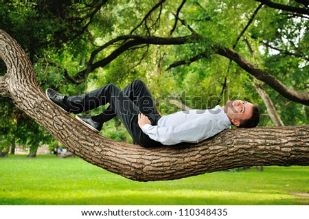 the man climbing a tree