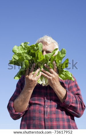 The man hiding his face under fresh lettuce.