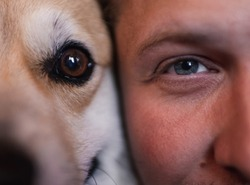 The man's and the corgi dog's eye close up