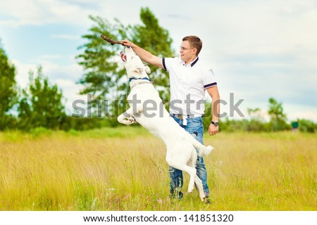 The man trains the dog. Educating dog. Play with a pet. Dog handler