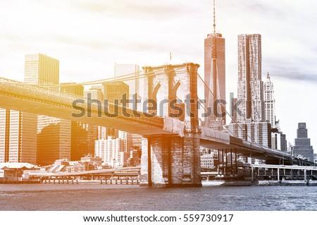 The Manhattan skyline and Brooklyn Bridge seen from Brooklyn Bridge Park in Brooklyn, New York. #559730917