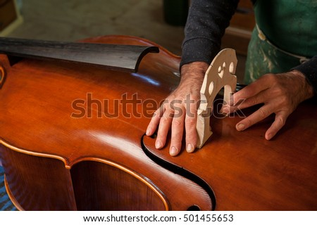 The master luthier builds a double bass in his workshop #501455653