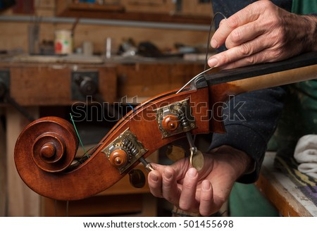 The master luthier builds a double bass in his workshop #501455698