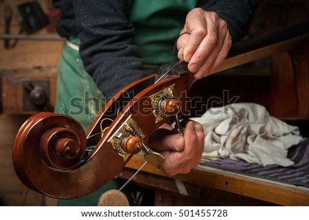 The master luthier builds a double bass in his workshop #501455728