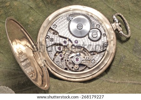 The mechanism of an old watch