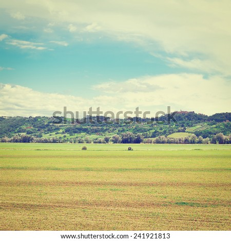 The Medieval Italian Town Surrounded by Forests and  Fields Planted with Corn, Instagram Effect #241921813