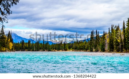 The Meeting of the Rivers location where the Athabasca River and the Whirlpool River meet in Jasper national Park in the Canadian Rocky Mountains in the province of Alberta #1368204422