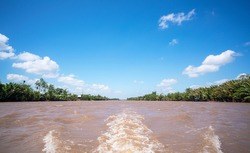The Mekong Delta in Vietnam is a vast maze of rivers, swamps and islands, floating markets, Boats are the main means of transportation, and tours of the region.