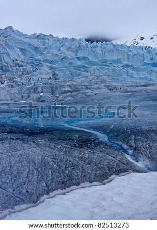 The Mendenhall Glacier