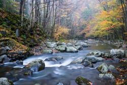 The Middle Prong of the Little River flows peacefully through the autumn landscape of Great Smoky Mountains National Park in the Appalachian Mountains of Tennessee.