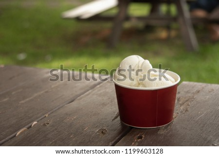 The milk flavor ice cream two scoops inside the red cup on the wooden table in outdoor garden