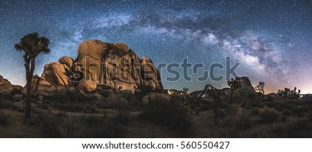 The Milky Way Arch above Joshua Tree