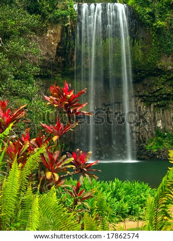 The Millaa Millaa falls in Queensland Australia