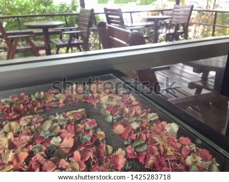 the mirror of shop is reflected in the mirror surface of the table have dry flower. Blurred image for background. #1425283718