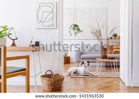 The modern boho interior of open room in cozy apartment with lying dog on the carpet, gray sofa, desk, plants, flowers, wooden and elegant personal accessories.  Mock up paintings concept. Home decor.