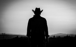 the modern cowboy with cowboy hat at the countryside on a sunset evening - silhouette - american cowboy