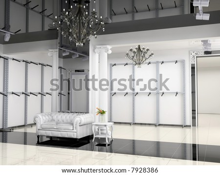 the modern shop interior design project (3D image)