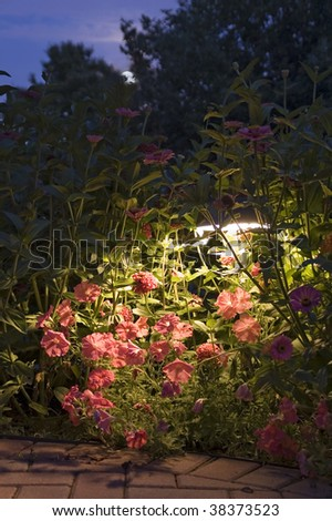 The Moon and a garden at night - stock photo