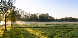 The morning field. Fog above the ground. Wuhlgarten, Berlin district of Marzahn-Hellersdorf.