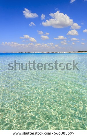 The most beautiful sand beaches of Apulia:Porto Cesareo marine,Salento coast.ITALY (Lecce).It's marine protected areas thanks to the high biological value of its very rich and varied marine community. #666083599
