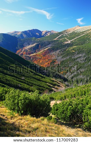 the mountain autumn landscape with colorful forest - Small Tatra - Slovakia