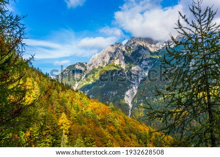 The mountains are overgrown with dense mixed forest. The famous Triglav Park, Slovenia. The shores of Lake Jasne Zdjęcia stock ©