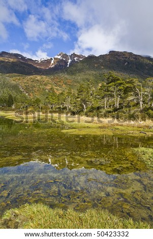 the mountains, the magellan forest and the steppe in tierra del fuego, patagonia