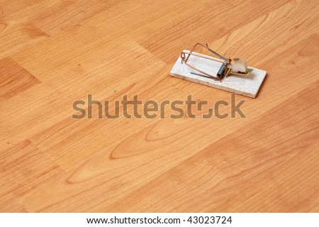 the mousetrap on wooden background