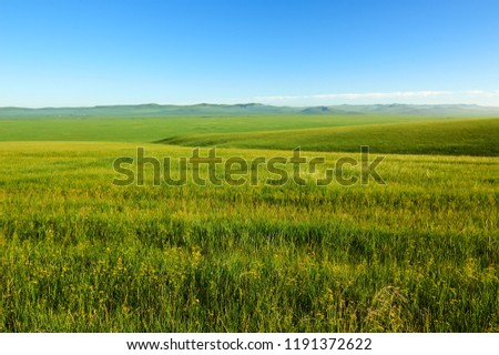 The Muzigler river valley of Hulunbuir grassland of China. #1191372622