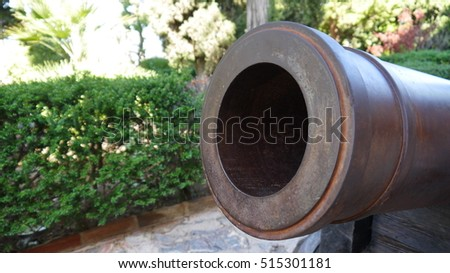 Photo of  The muzzle