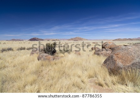 The Namib Rand Nature Reserve