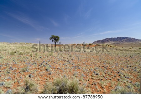 The NamibRand Nature Reserve in Namibia