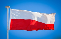 The national flag of Poland. Known as the Flag of the Republic of Poland. Polish flag blowing in strong wind against a pure blue sky. Symbol of national patriotism.