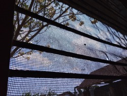 The natural atmosphere from behind the prison window