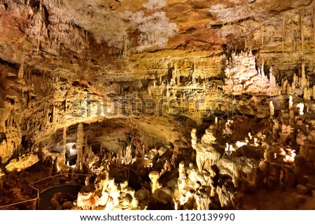 The Natural Bridge Caverns are the largest known commercial caverns in the U.S. state of Texas, still very active and considered living.