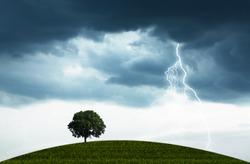 The natural landscape with the storm, overcast sky and lonely tree