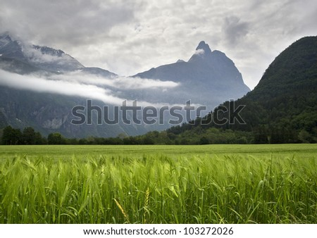 The nature of summer Norway. Mountains, lakes. Fjords of Norway. - stock photo