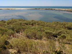 The nature reserve Ria Formosa near the town Tavira in the Algarve in Portugal