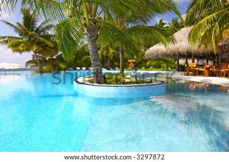 the nice pool, maldives, indian ocean