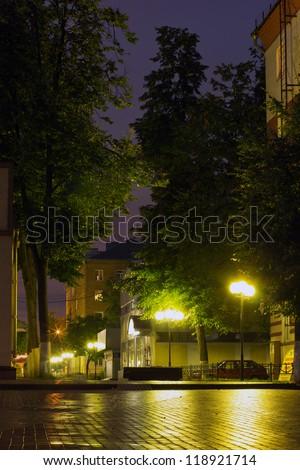The night city street Balashikha with light lights after the rain