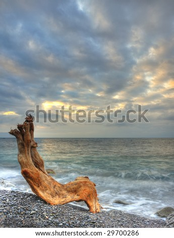 The night sea and timber. The sea photographed at a dawn with long endurance. Crimea, Ukraine