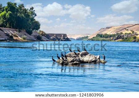 The Nile is the longest River in the world. It flows all through Egypt, from south to north. The Nile River was very important to life in ancient Egypt.